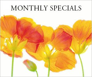Monthly_Specials-GoogeOp1.jpg